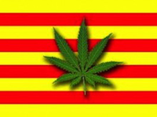 cannabis-club-barcellona